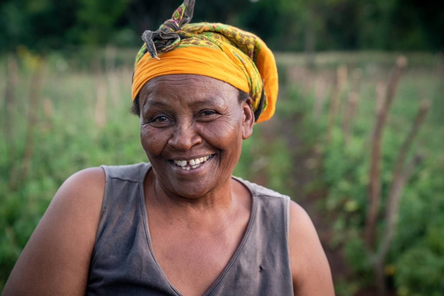 Improve the life of a smallholder farmer